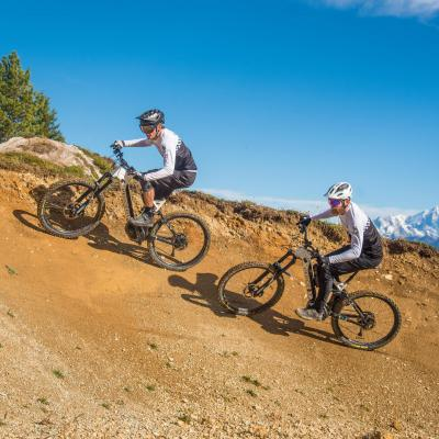 Electrische Mountainbike
